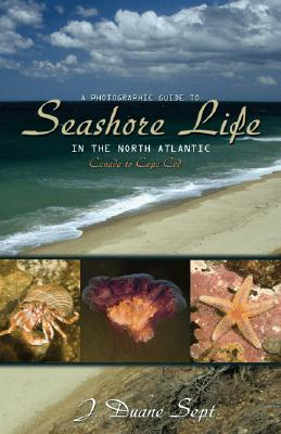 A Photographic Guide to Seashore Life in the North Atlantic By Sept, J. Duane